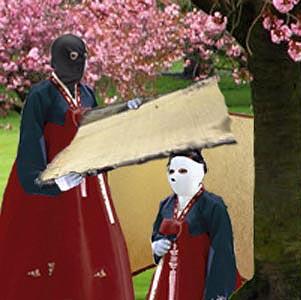 sakura trees in park in Harrogate - United Kingdom