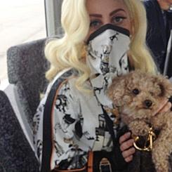 katrin_Lady_Gaga_at_Bulgaria_by_Twitter01